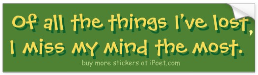 I've Lost My Mind - bumpersticker